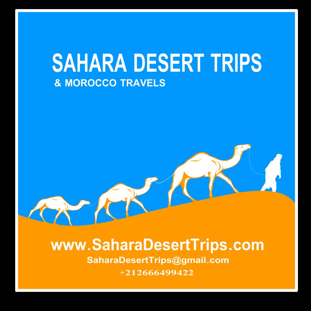 Sahara Desert Trips and Morocco Travels