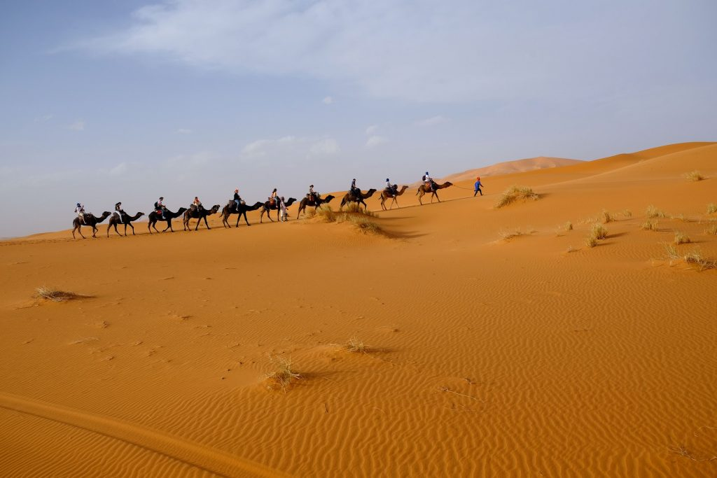 Book A Sahara Desert Trip – Recommended Agency In Morocco - YOUR MOROCCO SHOP