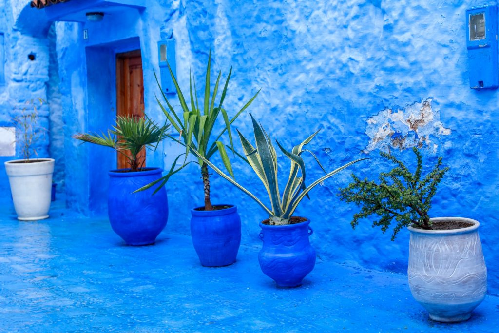 Chefchaouen with its blue washed houses
